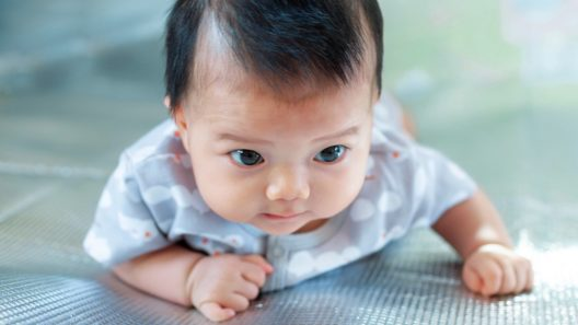 Vauvan Puheen Kehitys