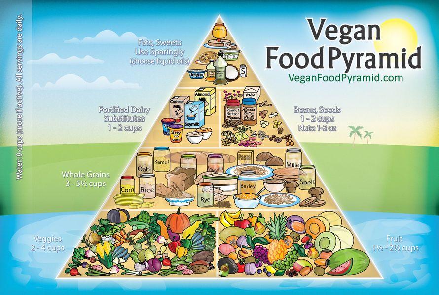 Vegaaninen ruokapyramidi. Kasvikset ja hedelmät ovat vegaanilapsen ruokavalion perusta.